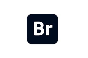 Adobe Bridge 2021 (11.0.1.109.0) 破解直装版